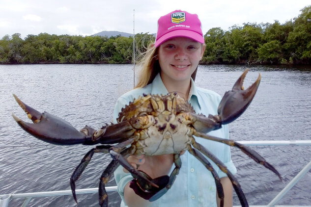 Mud crab caught on the Daintree River